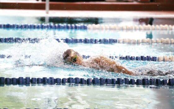 Обучение плаванию детей, взрослых 20 р школа, тренировки в Минске