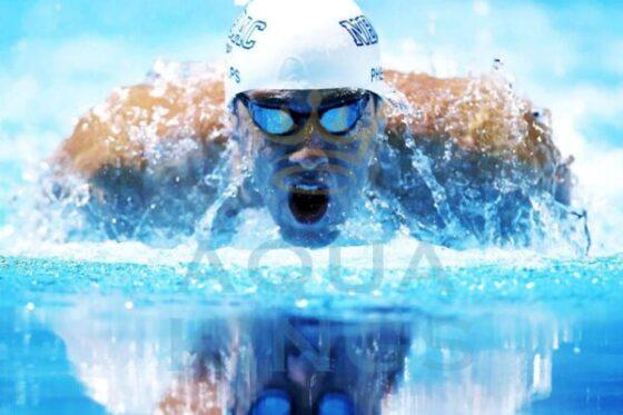 Обучение плаванию для взрослых в Минске, программа тренировок