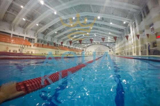 Бассейн БГУФК прыжковый, взрослый 50 м и детский 25 м, адрес цены